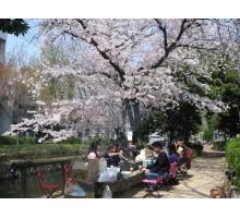 Hà Nội – Osaka – Kyoto – Toyohashi – Kawaguchi – Tokyo 6 ngày bay VN 17/06