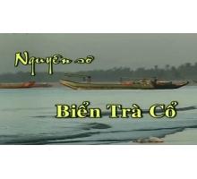 Tour Du lịch Trà Cổ – Móng Cái – Hạ Long (4 ngày 3 đêm)