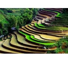Chương trình du lịch Hà Nội - Sa Pa 3 đêm 2 ngày
